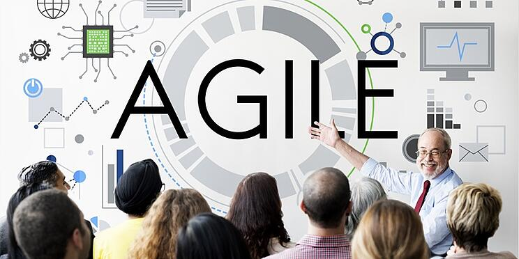 Are_You_Ready_for_an_Agile_Learning_Culture_and_Agile_learning_organization.jpg