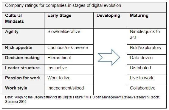 How_HR_Can_Lead_the_Digital_Transformation_IB.jpg