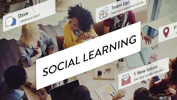 How to Measure the Impact of Social Learning