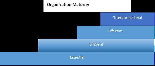 Organization Maturity